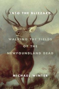Into the Blizzard: Walking the Fields of the Newfoundland Dead  Michael Winter (Doubleday Canada)