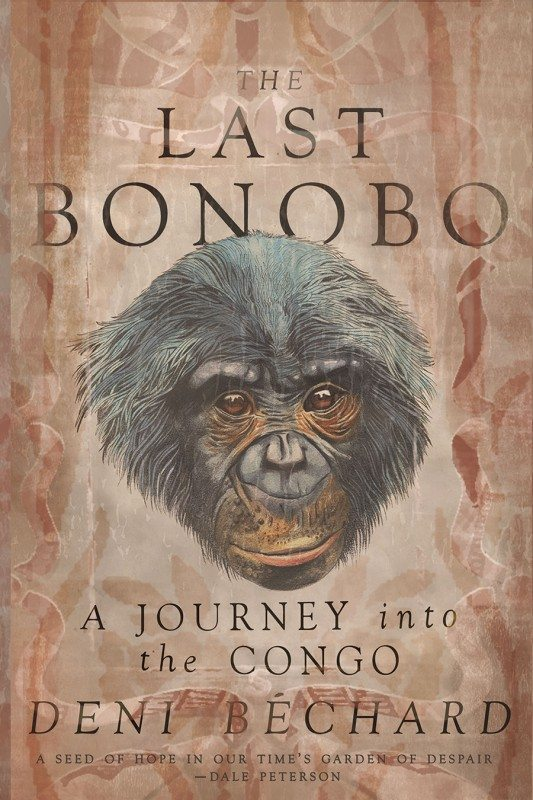 The-Last-Bonobo-bechard
