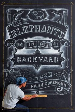 Reviews-December_ElephantsinmyBackyard_Cover